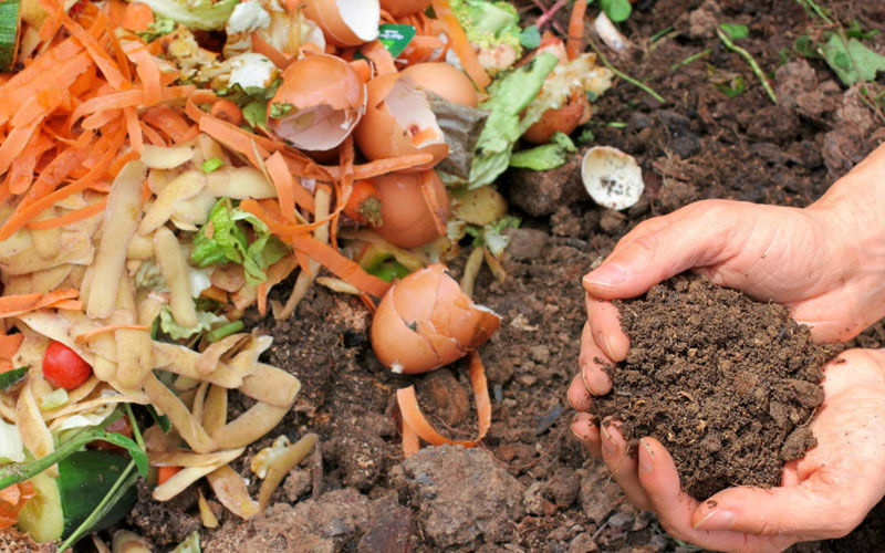 Collect material for compost
