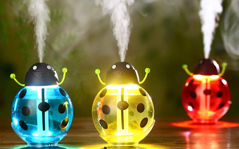 Little Beetle Humidifier