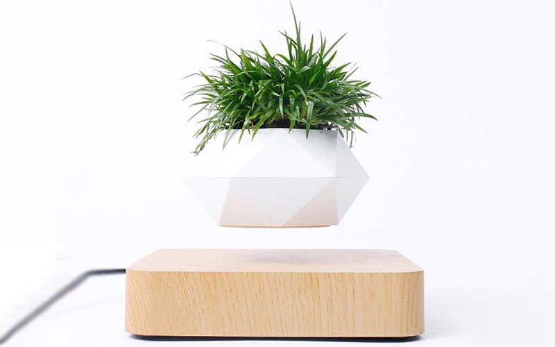 Magnetic Levitating Plant Pot For Bonsai, Real & Fake Plants