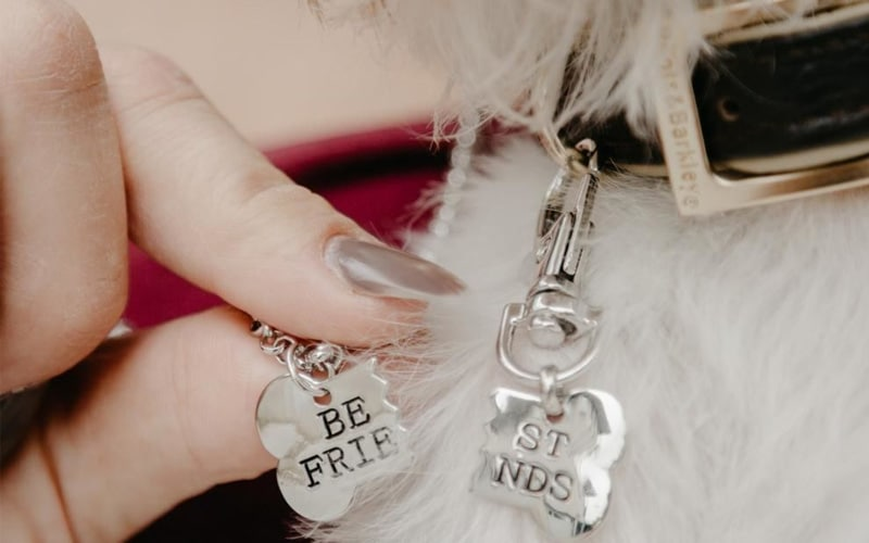 Best Friends Necklace for You and Your Dog