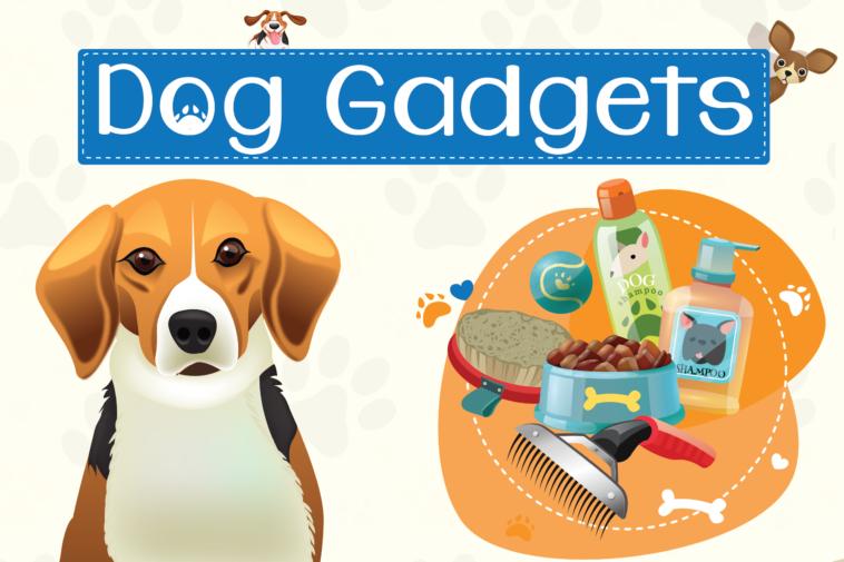 Cool Dog Gadgets