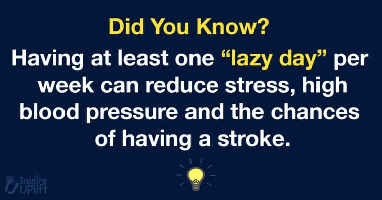 """Having at least one """"lazy day"""" per week can reduce stress, high blood pressure and the chances of having a stroke."""