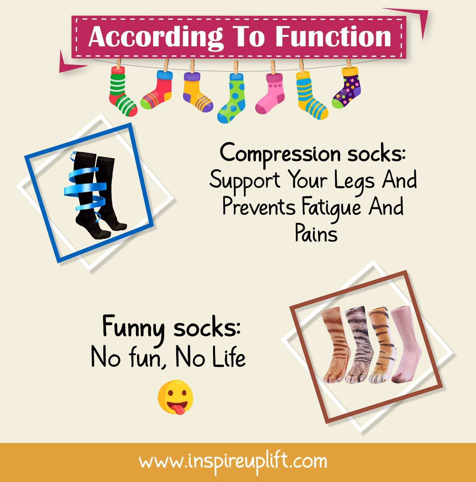 SOCK TYPES ACCORDING TO FUNCTION