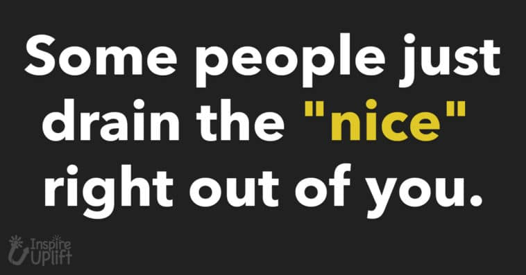 some people just drain the nice right out of you