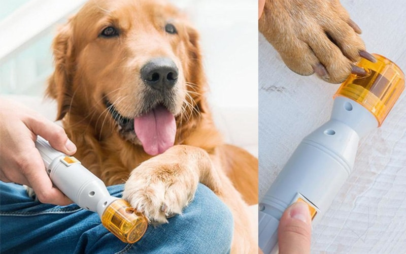 Untitled-Premium Painless Nail Clipper For Pets - All Size Dogs & Cats