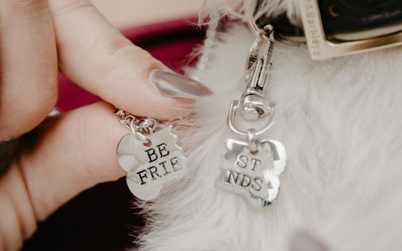 Best Friend Necklace & Tag For You & Your Dog