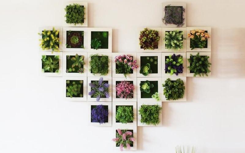Succulent Wall Hanger Frame