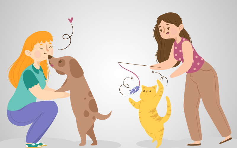 Teach something new to the pet