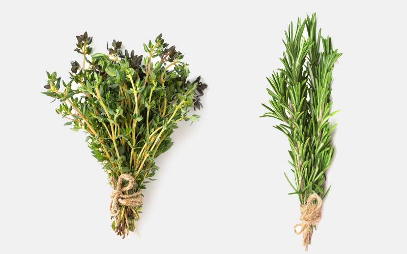 thyme vs rosemary