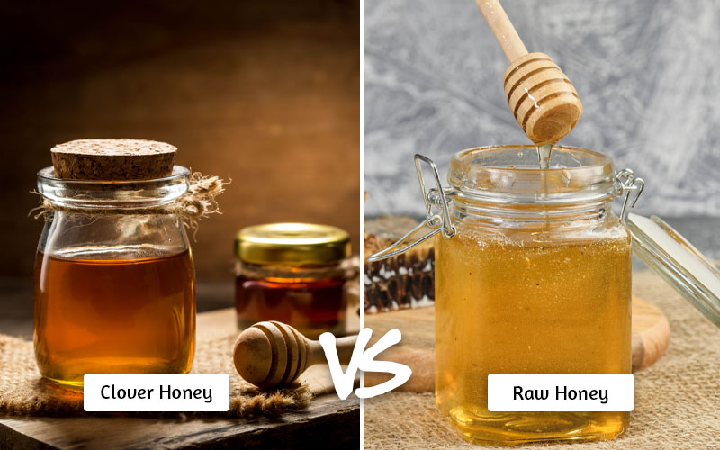Clover Honey vs Raw Honey