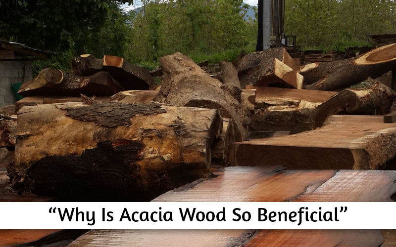 General properties of Acacia wood