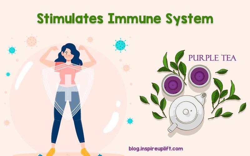 Stimulates Immune System