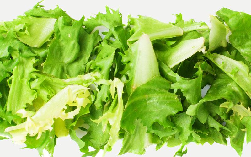 cut lettuce into smaller pieces