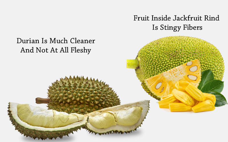 Jackfruit Vs Durian texture sticky and messy once opened