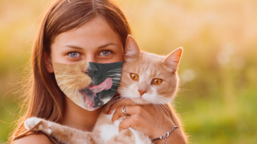 Top Ten Face Masks for Cat Lovers