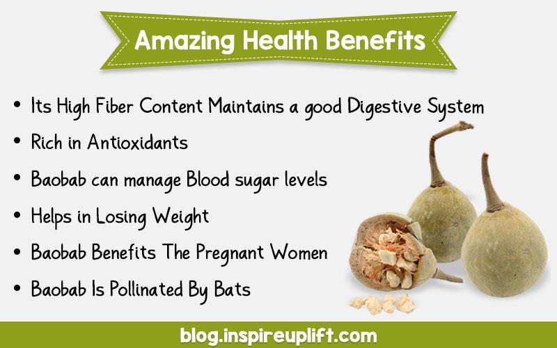 Baobab Fruit Has Amazing Health Benefits