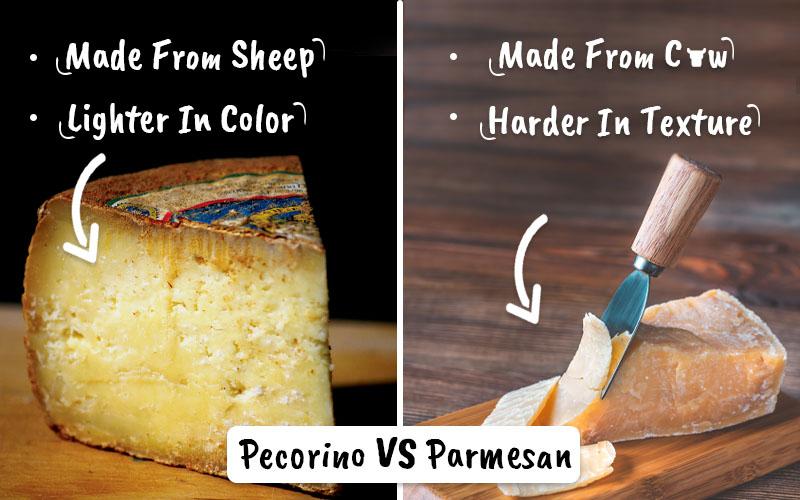 Pecorino vs Parmesan