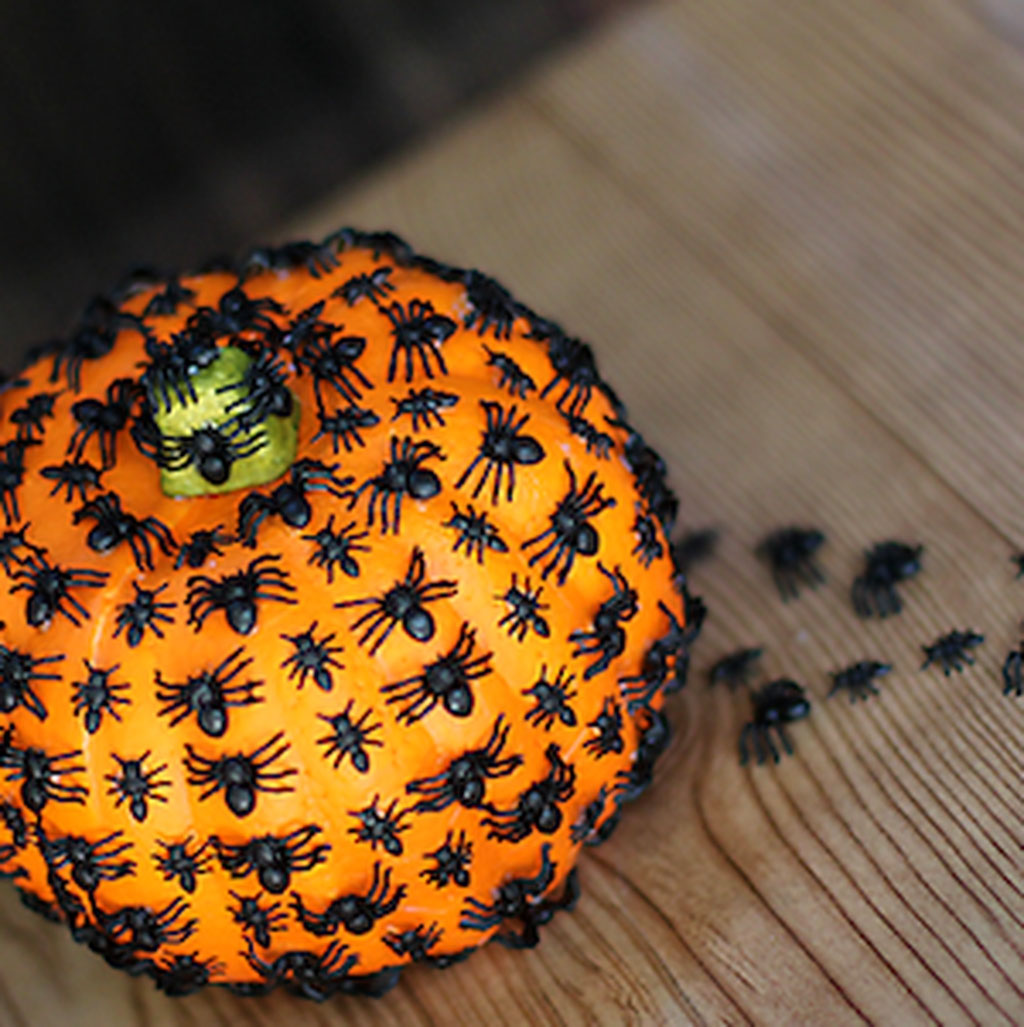 The Yucky Bugs Pumpking