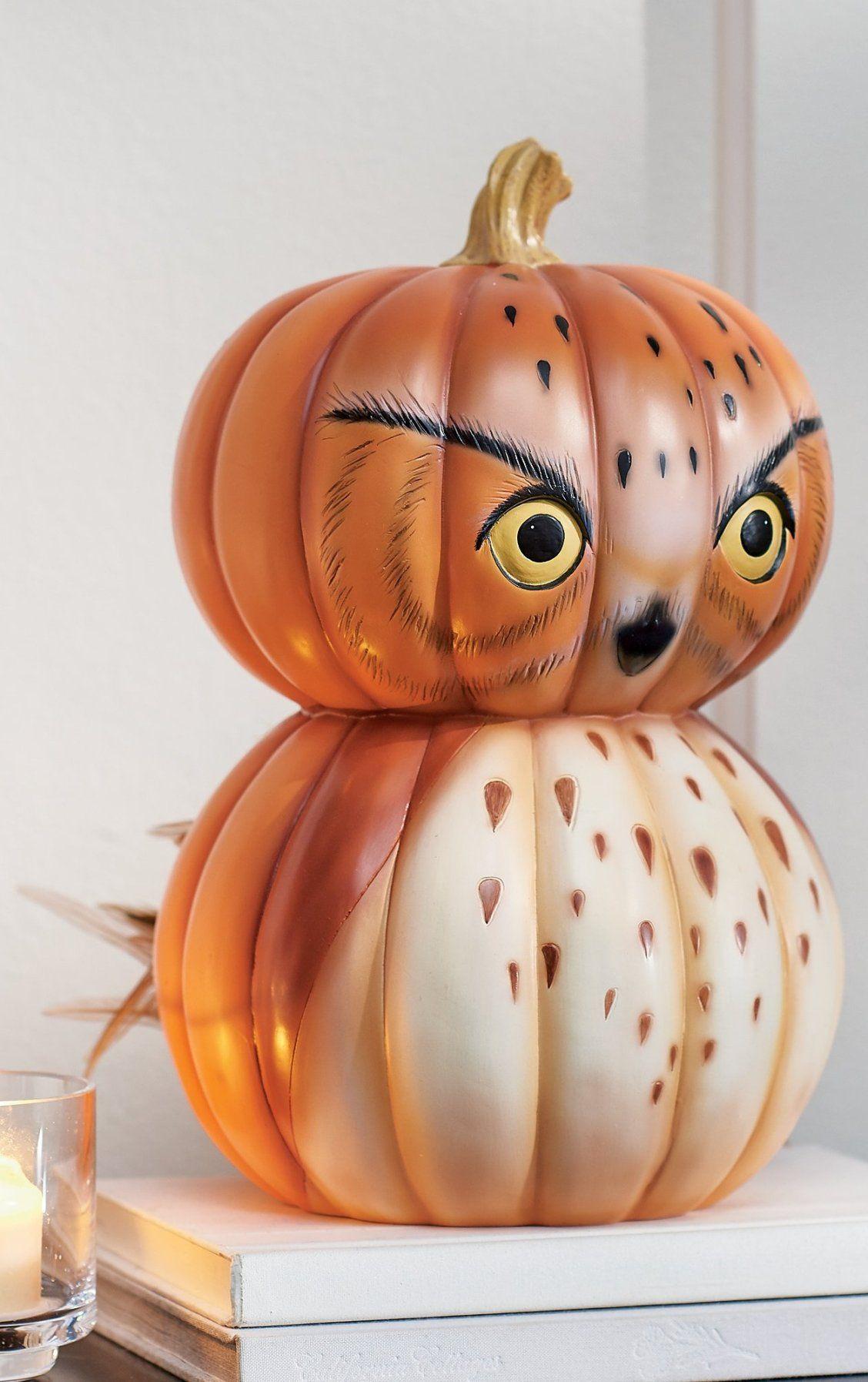 owly wowly pumpkins
