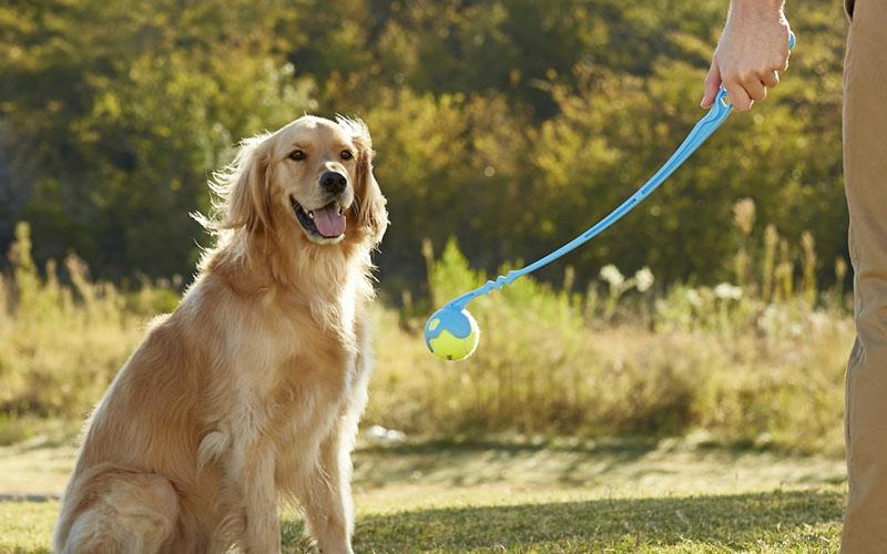 Fetch It Manual Dog Ball Launcher & Thrower