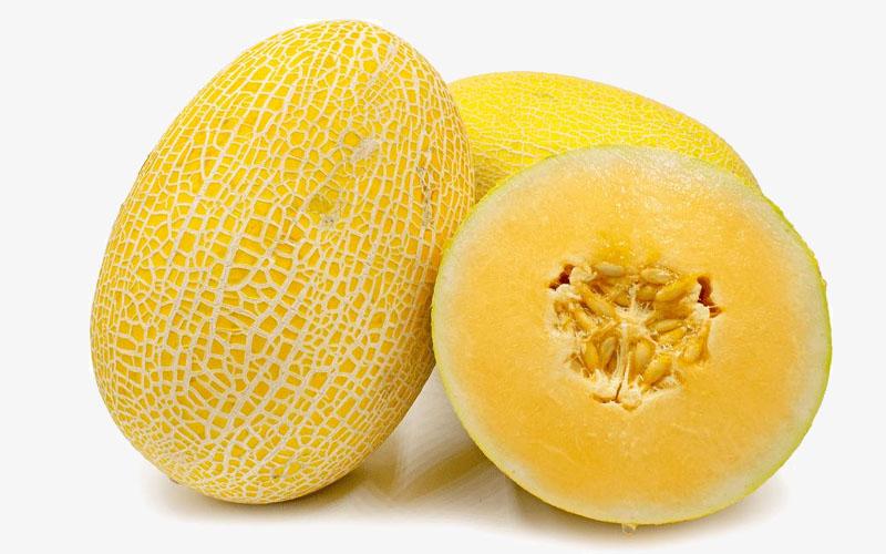 Hami or Honey Kiss Melon