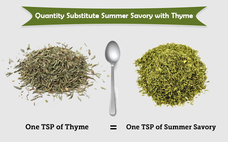 How to use Summer savory in place of thyme