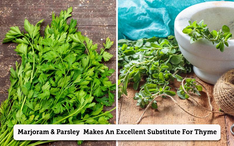 Marjoram & Parsley thyme substitutes