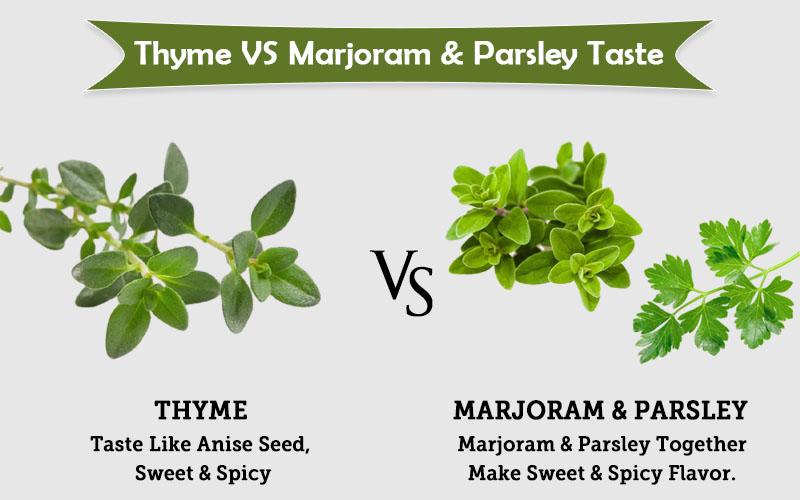 thyme spring vs marjoram & Parsley taste image
