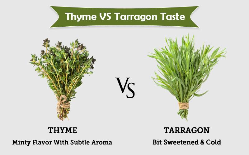 thyme spring vs tarragon taste image