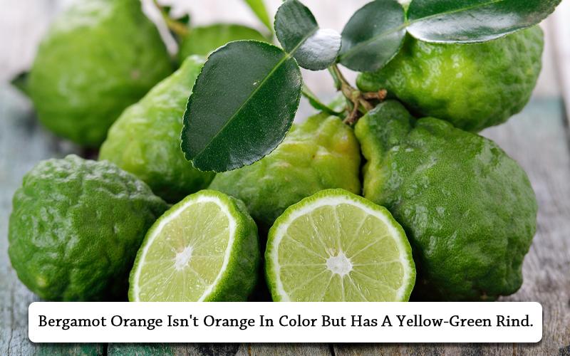 Bergamot Orange types