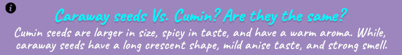 cumin seed info