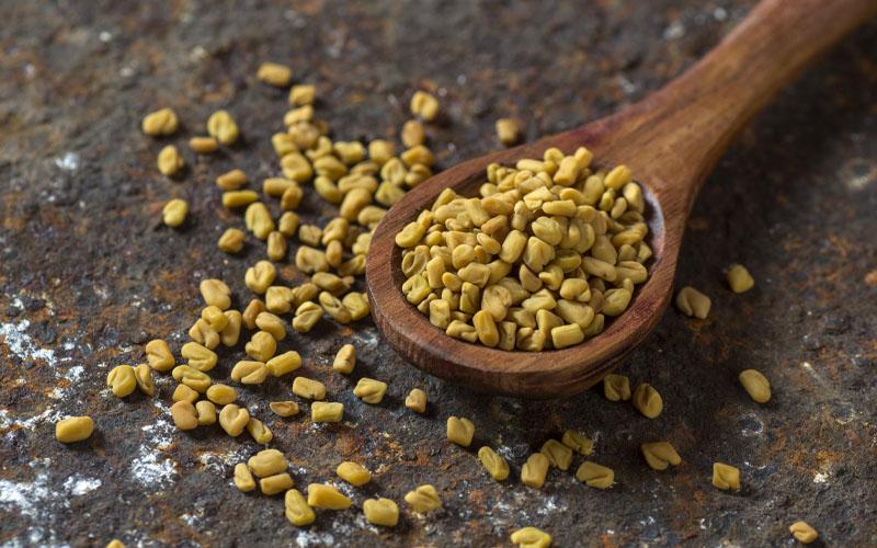 fungreek seeds