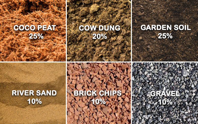 Get the Soil Ready