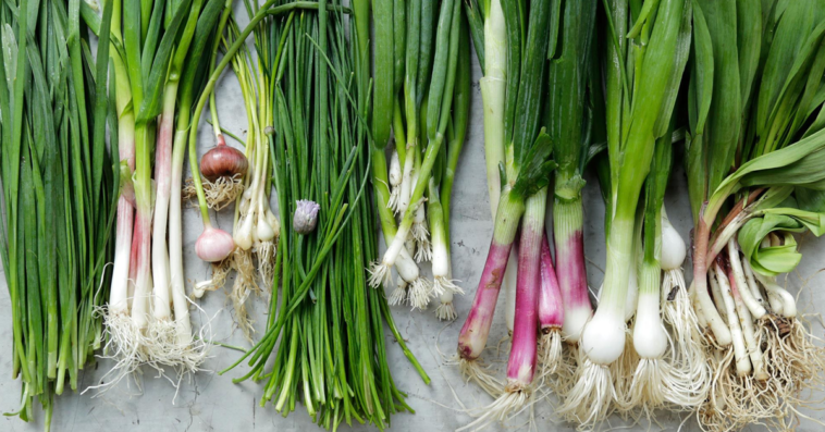 Green Onion Substitute