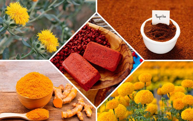 substitutes for saffron