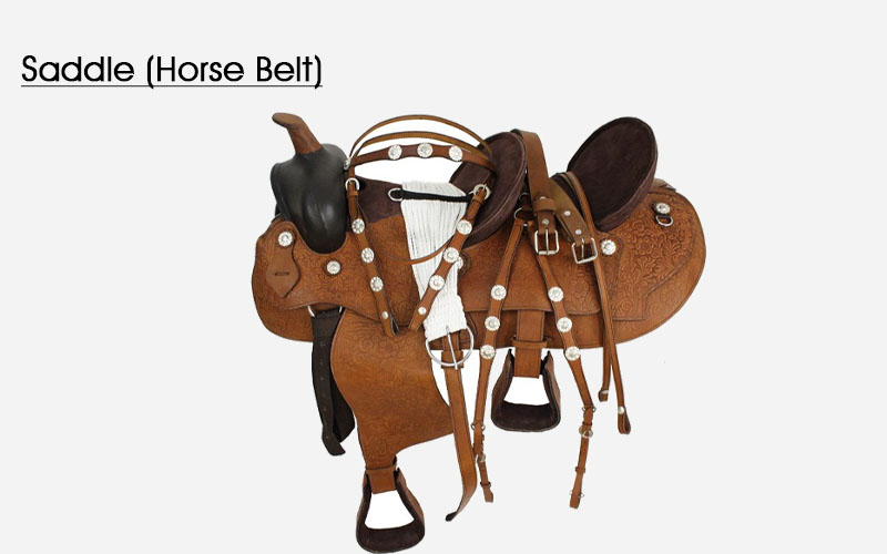 Saddle (Horse Belt)