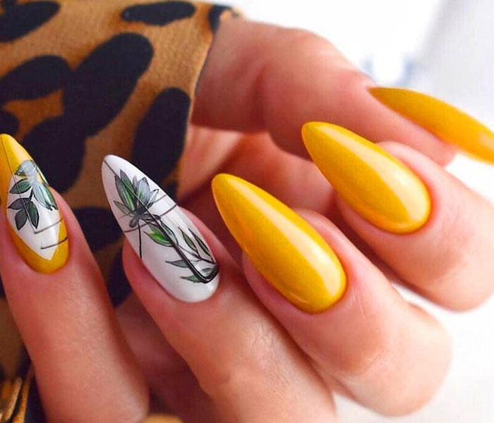 The Absolute Nail Beauty