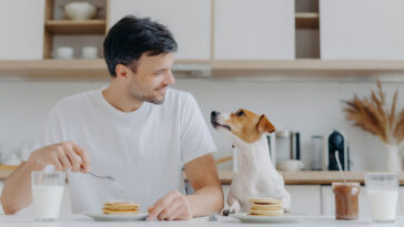 Can Dogs Eat Human Food