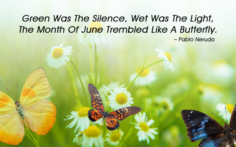 June Inspirational Quotes
