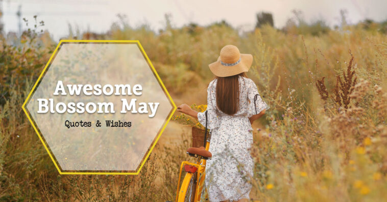 May Quotes