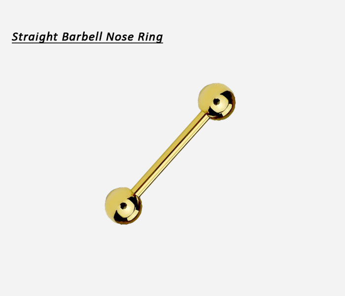 barbell nose ring