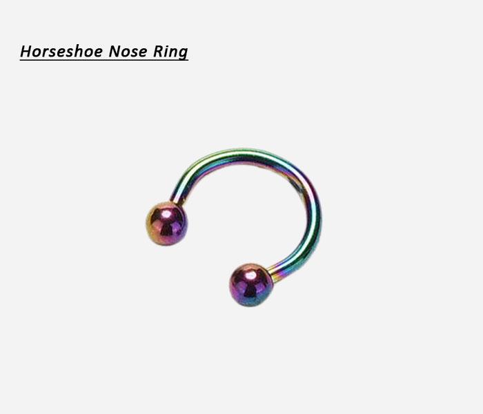 horseshoe nose ring