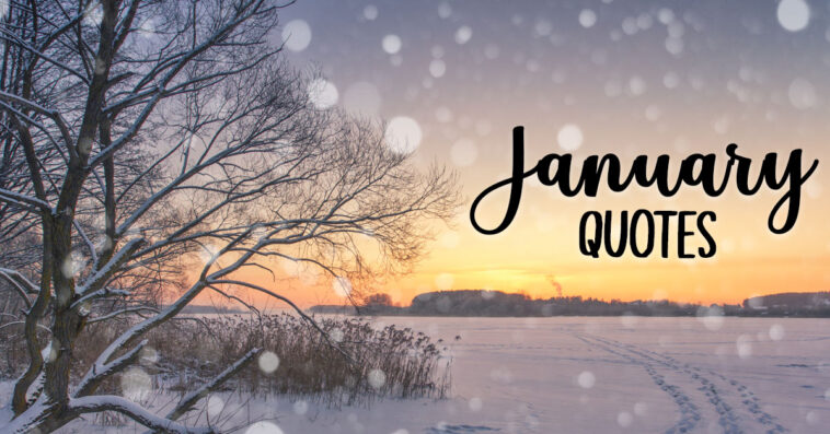 January Quotes