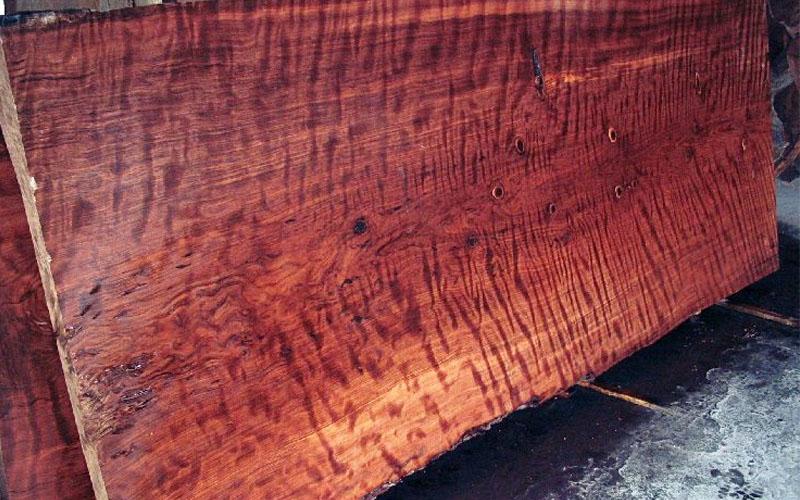 Redwood burl wood