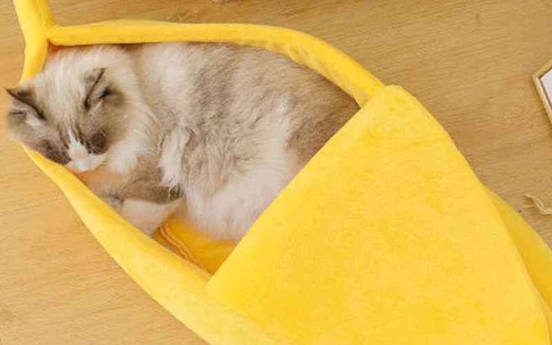 Cotton Banana Cat Bed