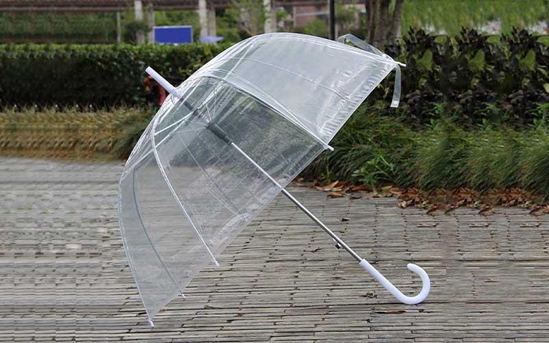 8-Rib-Transparent-Bubble-Umbrell