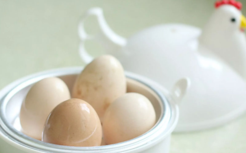Chicken Egg Cooker For Microwave