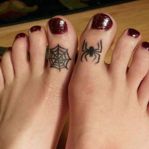 Spider & Cobweb